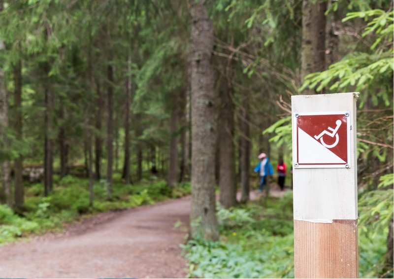 Segnaletica che indica un percorso nel bosco per le carrozzine