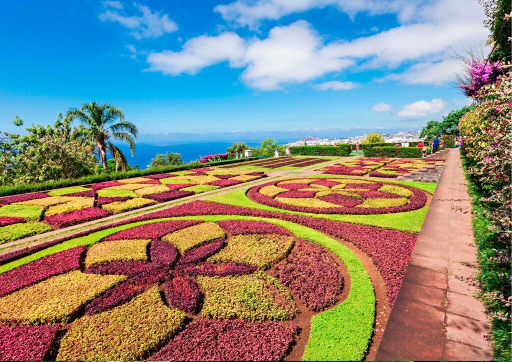Il giardino botanico Madeira con vista sul mare: fiori colorati che creano forme geometriche decorativo
