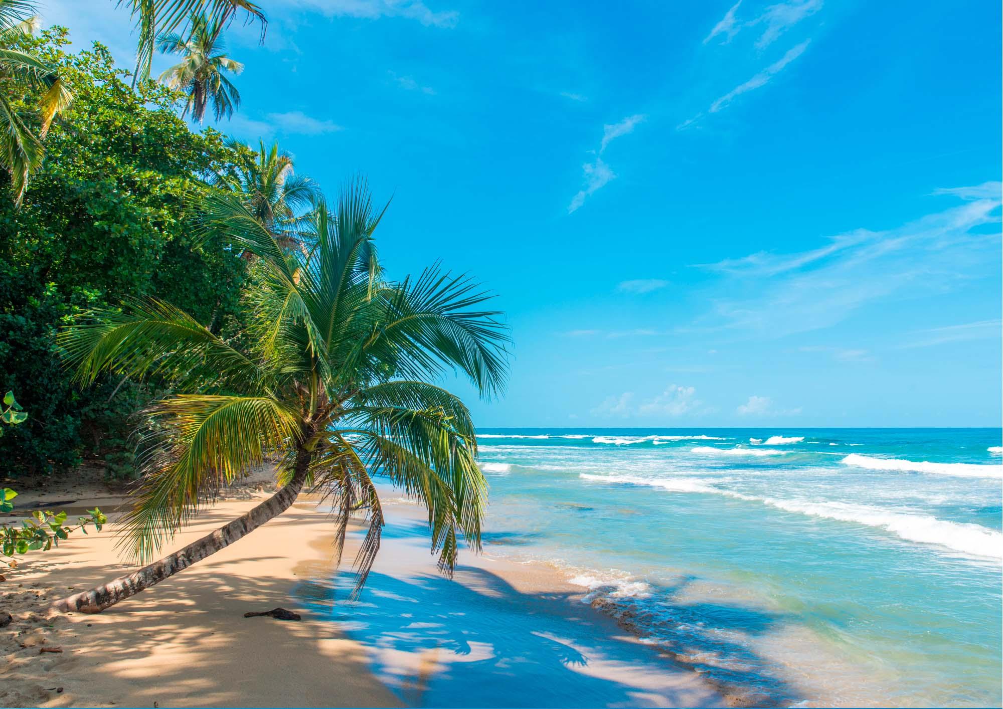 Spiaggia tropicale con un mare cristallino e cielo azzurro